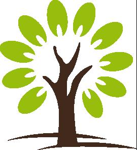 Pflege-Seife mit Arganöl handgesiedet auf pflanzlicher Basis Schachtel vorne